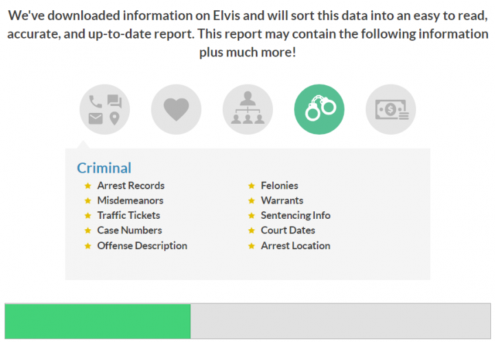 Instant Checkmate criminal record search